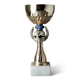 Pokale & Auszeichnungen